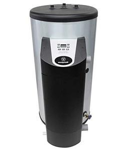 Westinghouse WGR060LP076 97-Percent High-Efficiency Gas Wate